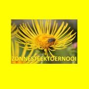 logo Zonnesteektoernooi 2017